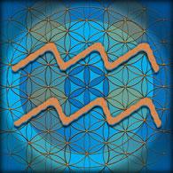 Aquarius (Jan. 20- Feb. 19)